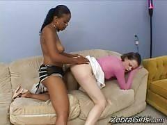 Olivia Winters & Sara Minor. Zebra Girls