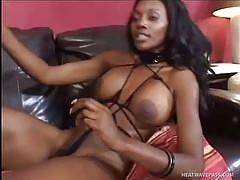 Gorgeous Sexy Ebony Girls Teasing and Fucking Each Others' Hot Black Pussies